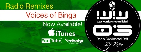 Voices of Binga FB Banner